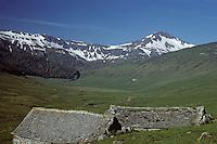Europe/France/Auvergne/15/Cantal/Parc Régional des Volcans/Massif du Puy Mary (1787 mètres): Burons depuis la vallée de l'Impradine