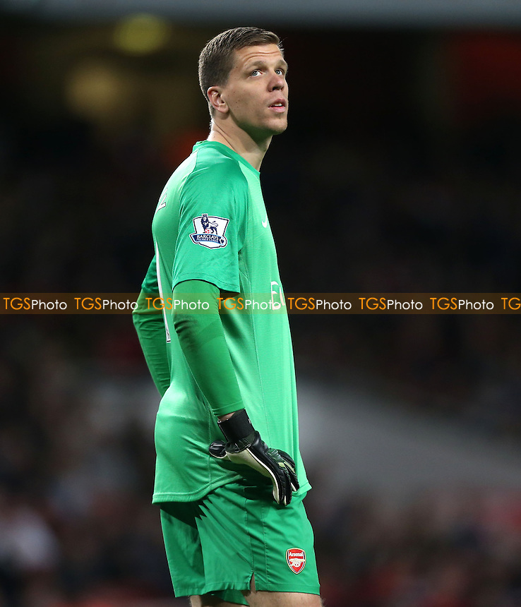 Wojciech Szczesny of Arsenal - Arsenal vs West Ham United, Barclays Premier League at the Emirates, Arsenal - 15/04/14 - MANDATORY CREDIT: Rob Newell/TGSPHOTO - Self billing applies where appropriate - 0845 094 6026 - contact@tgsphoto.co.uk - NO UNPAID USE