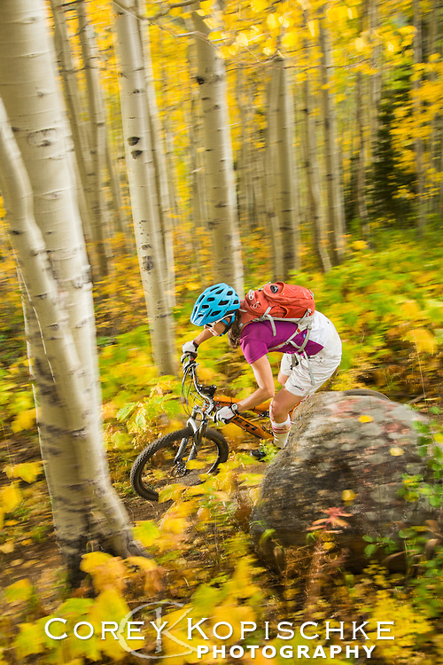 Fall mountain biking through the aspens.
