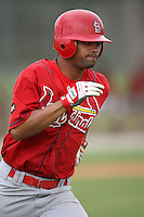 April 14, 2009:  Outfielder Frederick Parejo of the St. Louis Cardinals extended spring training team during a game at Roger Dean Stadium Training Complex in Jupiter, FL.  Photo by:  Mike Janes/Four Seam Images