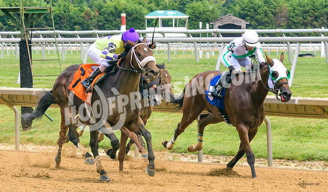 Baychimo winning at Delaware Park on 7/1/17