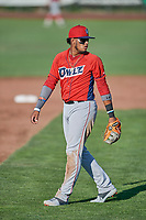 Kevin Maitan (9) of the Orem Owlz during the game against the Ogden Raptors at Lindquist Field on June 26, 2018 in Ogden, Utah. The Raptors defeated the Owlz 6-5. (Stephen Smith/Four Seam Images)