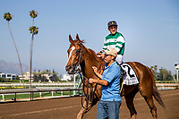 ARCADIA, CA - JUNE 03: Stellar Wind #2 with Victor Espinoza wins the Beholder Mile Stakes at Santa Anita Park  on June 03, 2017 in Arcadia, California. (Photo by Alex Evers/Eclipse Sportswire/Getty Images)