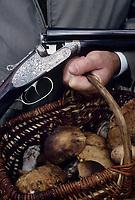 Europe/France/Aquitaine/Gironde/Pomerol : Chasse et panier de cèpes de Bordeaux lors d'une partie de chasse dans le vignoble de Pomerol