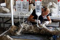 Pompei 86 calchi sono sottoposti ad un intervento di recupero e restauro e studio per poter ricavare profili antropologici e genetici <br /> <br /> infiltazioni di materiale consolidaNTE