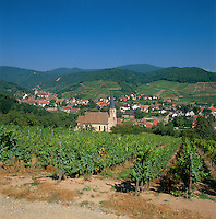 France, Alsace, Department Bas-Rhin, Andlau: Wine village at Route des vins d'Alsace, at the foot of the Vosges, at background left former Abbey St. Peter and Paul | Frankreich, Elsass, Départements Bas-Rhin, Andlau: an der Elsaesser Weinstraße, am Fuss der Vogesen, im Hintergrund links die ehemalige Abteikirche Sankt Peter und Paul