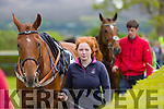 Jodie Townsend with Rwegoinhigh at  the The North Kerry Harriers Point to Point in Ballybeggan Racecourse on Saturday