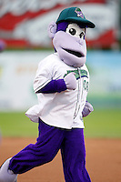 July 30, 2009: Mascot of the Jamestown Jammers Bubba Grape during a game at Russell Diethrick Park in Jamestown, NY.  The Jammers are the NY-Penn League Short-Season Single-A affiliate of the Florida MarlinsPhoto By Mike Janes/Four Seam Images