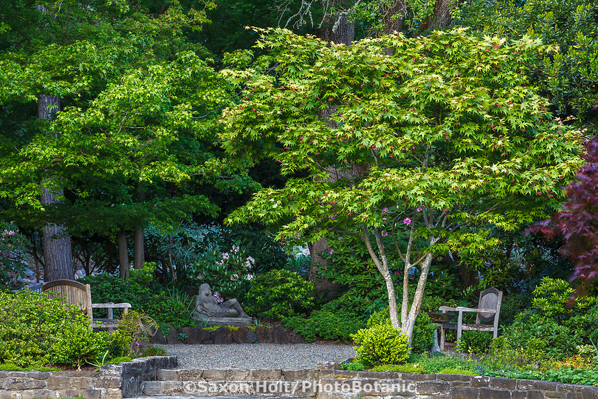 Shady garden room with sculpture under Japanese Maple trees at Marin Art and Garden Center