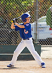 LALL AAA Cubs vs. Red Sox at Purissima Fields in Los Altos Hills,  May 31, 2014