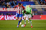 Atletico de Madrid's player Diego Godín and PSV Eindhoven's players Santiago Arias during a match of La Liga at Vicente Calderon Stadium in Madrid. November 22, Spain. 2016. (ALTERPHOTOS/BorjaB.Hojas)