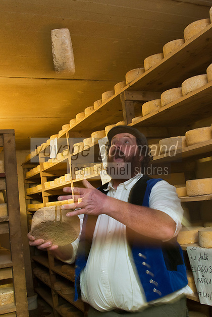 Europe/France/Bretagne/56/Morbihan/Sarzeau: Ferme fromagère de Sucinio, Gurvan Bourvellec y transforme le lait de petites vaches bretonnes pie noire,  Production du fromage: Tome de rhuys  et Élevage de vaches de race bretonne pie noire. <br />  [Non destiné à un usage publicitaire - Not intended for an advertising use]