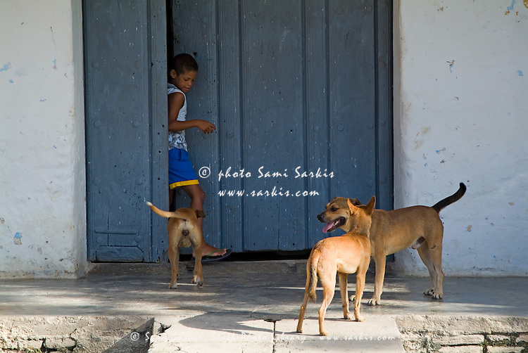Boy stepping out his front door and being greeted by his pet dogs, Trinidad, Cuba.