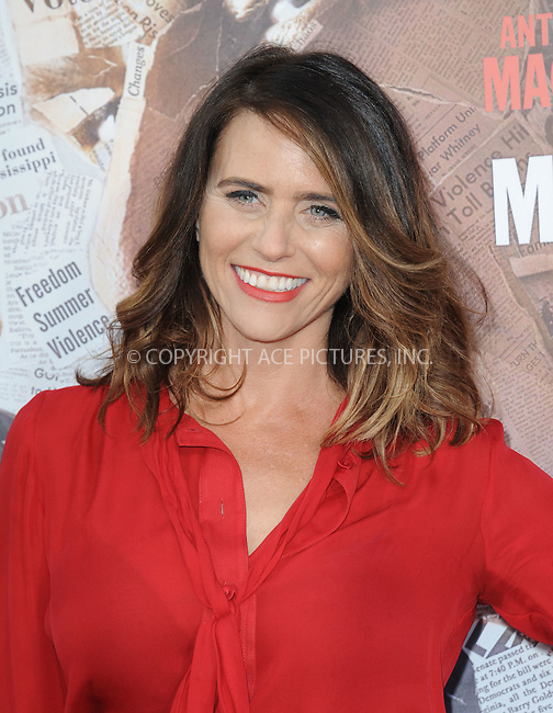 WWW.ACEPIXS.COM<br /> <br /> May 10 2016, LA<br /> <br /> Amy Landecker arriving at the premiere of HBO's 'All The Way' at Paramount Studios on May 10, 2016 in Hollywood, California.<br /> <br /> By Line: Peter West/ACE Pictures<br /> <br /> <br /> ACE Pictures, Inc.<br /> tel: 646 769 0430<br /> Email: info@acepixs.com<br /> www.acepixs.com