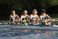 Race: 181  W.MasC/D.4+   Winner of Race: 149  vs Winner of Race: 148 <br /> <br /> Ross Regatta 2017 - Monday<br /> <br /> To purchase this photo, or to see pricing information for Prints and Downloads, click the blue 'Add to Cart' button at the top-right of the page.