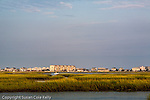Tidal marsh on the Intracoastal Waterway, Murrels Inlet, SC