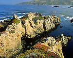 Soberanes Point at Garrapata State Park along Highway 1 and the Big Sur Coast. 3,000 acres (1,214ha). Park has two miles of beach front, coastal hiking and a 50-foot climb to a beautiful view of the Pacific. Monterey County, CA.