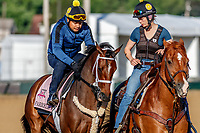 LOUISVILLE, KENTUCKY - MAY 01: Farrell, owned by Coffeepot Stables and trained by Wayne M. Catalano, exercises in preparation for the Kentucky Oaks at Churchill Downs on May 1, 2017 in Louisville, Kentucky. (Photo by Jesse Caris/Eclipse Sportswire/Getty Images)