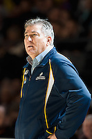 Melbourne, 15 August 2015 - Brendan JOYCE of Australia watches the action in game one of the 2015 FIBA Oceania Championships in women's basketball between the Australian Opals and the New Zealand Tall Ferns at Rod Laver Arena in Melbourne, Australia. Aus def NZ 61-41. (Photo Sydney Low / sydlow.com)