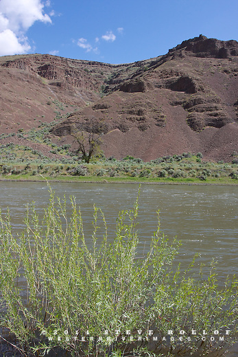 Cliffs and rock above the John Day River, Oregon.