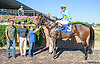Serapis winning at Delaware Park on 9/14/15