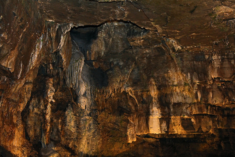The liights on this ceiling section in Howe Caverns creates an interesting pattern in shades of gold.