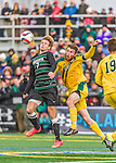 15 November 2015: University of Vermont Catamount Defender Jack Shea (23), a Senior from East Montpelier, VT, battles Binghamton University Bearcat Forward Ben Ovetsky (7), a Sophomore from Irvington, NY, at Virtue Field in Burlington, Vermont. The Catamounts shut out the Bearcats 1-0 in the America East Championship Game. Mandatory Credit: Ed Wolfstein Photo *** RAW (NEF) Image File Available ***