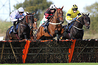 Topenhall ridden by Charlie Poste (R) and Monroe Park ridden by Miss E Crossman jump together during the Warrens of Warwick 34 Years Anniversary Handicap Hurdle