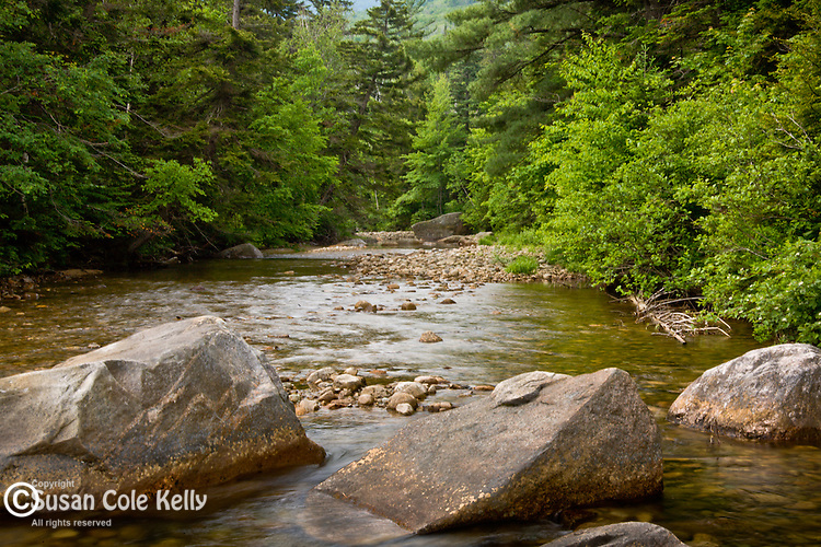 The Zealand River flows through the White Mountain National Forest at Crawford Notch, NH, USA