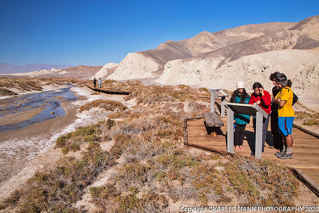 The Salt Creek boardwalk in Death Valley National Park is an easy hike and displays a number of ecological information panels to educate the public about the rare pupfish that live there and other environmental features of the park.