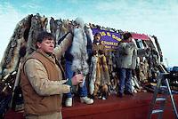 Man selling fur pelts at famous auction at Fur Rendezvous winter festival, Anchorage, Alaska