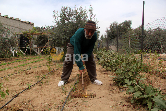"""A Palestinian farmer implants in his land on the occasion of """"Land Day"""", in Gaza city, on March 30, 2013. Land Day commemorates the death of six Arab Israeli protesters at the hands of Israeli troops during mass protests in 1976 against plans to confiscate land in Galilee. Photo by Ezz al-Zanoon"""