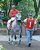 paddock before the Bob Magness Memorial Derby (Gr. 1) at Delaware Park on 5/30/09