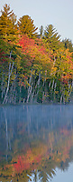 Council Lake in the Hiawatha National Forest receives morning light in autumn on it's western shore, Alger County, Michigan