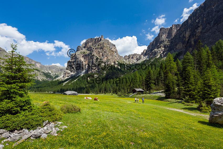 Italy, South Tyrol (Trentino - Alto Adige), Dolomites, near Selva di Val Gardena: Valley Langental (Vallunga) in Puez-Geisler Nature Park, at valley's end with tower Lietresturm of Puez Group (Gruppo del Puez) | Italien, Suedtirol (Trentino - Alto Adige), Dolomiten, bei Wolkenstein in Groeden: das Langental (Vallunga) im Naturpark Puez-Geisler, ein Wanderparadies im Sommer, am Talschluss bei Pradari mit dem Lietresturm