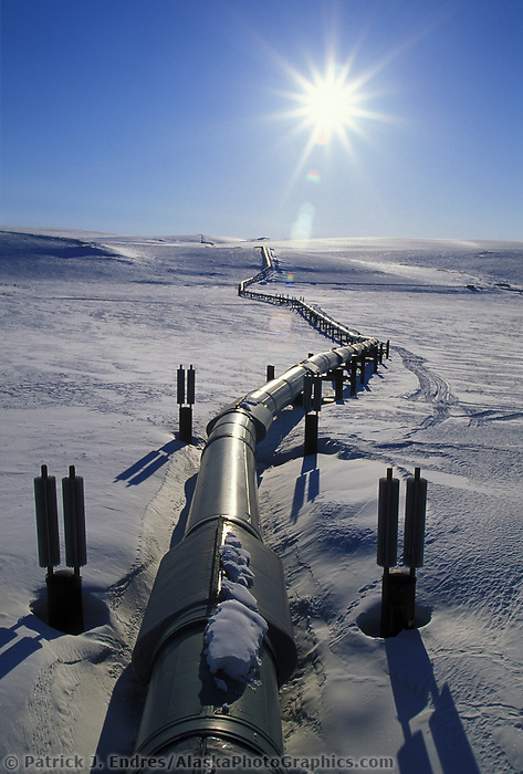 The Trans Alaska oil pipeline stretches across the snow covered tundra of Alaska's Arctic coastal plains, Arctic, Alaska.