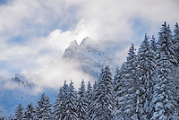Fresh snow covering pines and storm clearing from  mountain peaks, Bernese Alps, Switzerland