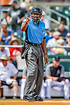 1 March 2019: MLB Umpire CB Bucknor works behind the plate during a  Spring Training game between the Miami Marlins and the Washington Nationals at Roger Dean Stadium in Jupiter, Florida. The Nationals defeated the Marlins 5-4 in Grapefruit League play. Mandatory Credit: Ed Wolfstein Photo *** RAW (NEF) Image File Available ***