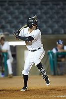 Kyle Watson (2) of the West Virginia Power at bat against the Lexington Legends at Appalachian Power Park on June 7, 2018 in Charleston, West Virginia. The Power defeated the Legends 5-1. (Brian Westerholt/Four Seam Images)