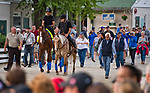 LOUISVILLE, KY - MAY 03: Bob Baffert walks with Justify to the track for morning workouts in preparation for the Kentucky Derby at Churchill Downs on May 3, 2018 in Louisville, Kentucky. (Photo by Scott Serio/Eclipse Sportswire/Getty Images)
