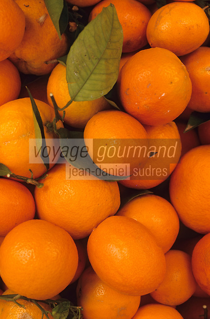 Europe/Espagne/Baléares/Minorque/Mahon :  Détail oranges sur un étal du marché du cloitre