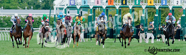Sea Bubble winning at Delaware Park on 8/24/2013