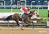 No Its Not winning at Delaware Park on 5/18/15