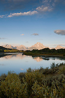 Mt. Moran reflects in the still waters of Oxbow Bend at sunrise