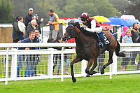 Winner of The British Stallion Studs EBF Upavon Fillies' Stakes Fanny Logan ridden by Robert Havlin and trained by John Gosden  during Horse Racing at Salisbury Racecourse on 14th August 2019