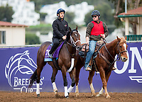 DEL MAR, CA - NOVEMBER 01: Firenze Fire, owned by Mr. Amore Stable and trained by Jason Servis, exercises in preparation for Sentient Jet Breeders' Cup Juvenile at Del Mar Thoroughbred Club on November 1, 2017 in Del Mar, California. (Photo by Kazushi Ishida/Eclipse Sportswire/Breeders Cup)