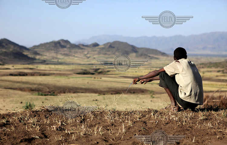 A man squats on a field, looking over failed crops in the Kobo region, Ethiopia.