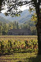 Europe/Europe/France/Midi-Pyrénées/46/Lot/Luzech: Le vignoble AOC Cahors et  la Chapelle Notre-Dame de l'île , chapelle des mariniers au cœur du vignoble,