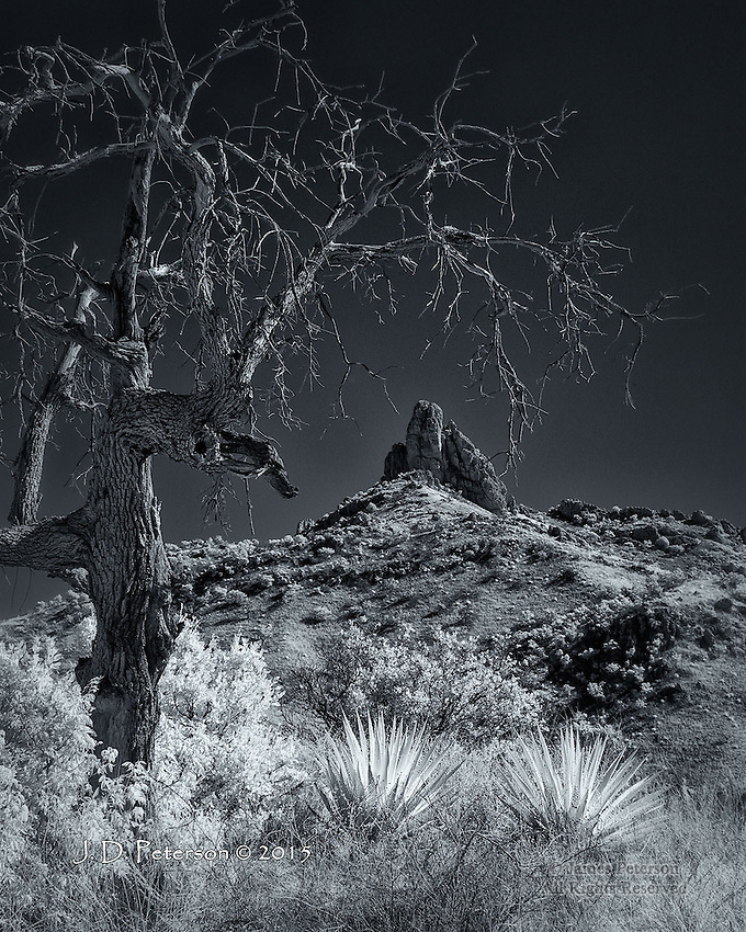Thumb Butte and Yuccas, Atascosa Mountains, Arizona