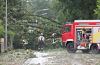 Baum ist auf die B44 in Mörfelden gestürzt und blockiert die Straße komplett - 18.08.2019: Unwetter in Rhein-Main
